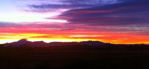 Rouge Bleu Sunrise