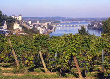 Saumur_and_loire